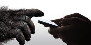 https://cdn.alza.hu/Foto/ImgGalery/Image/Article/corning-gorilla-glass-mini.jpg