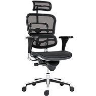 ANTARES Ergohuman mesh hálós irodai szék - fekete - Irodai szék