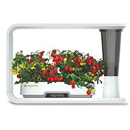 Aspara Nature Smart Grower - Okos virágcserép