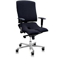 3DE Asana Steel - fekete - Irodai szék