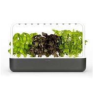 Kattintson és Grow Smart Garden 9 Grey - Okos virágcserép