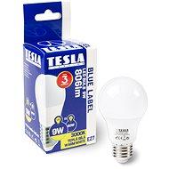 TESLA LED 9W E27 3000K 1 db - LED izzó