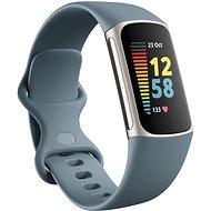 Fitbit Charge 5 Steel Blue/Platina rozsdamentes acél - Okoskarkötő