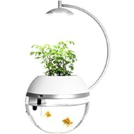 Herb&Fish Connect - Automata etető
