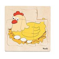Woody puzzle fatáblán - Tyúk kifejlődése