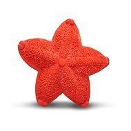 Lanco tengeri csillag