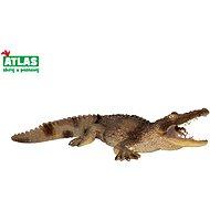 Atlas Krokodil - Figura