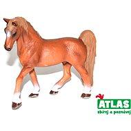 Atlas Ló - Figura