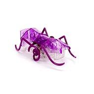 Hexbug Micro Ant lila