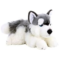 Rappa Husky plüss kutya 30 cm Eco-friendly - Plüssjáték