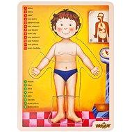 Woody Puzzle - Az emberi test - Puzzle