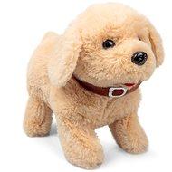 Akrobata kutya - Plüssjáték