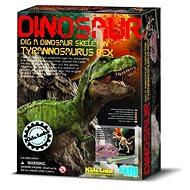 Dinoszaurusz csontváz - REX - Kísérletező készlet