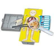 Anatómia - Oktató játék