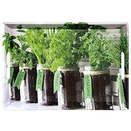 Kesper tálca, gyógynövények, 50 x 35 cm - Tálca