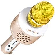 Technaxx 4611 - Kézi mikrofon