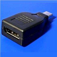 ROLINE DisplayPort (F) - mini DisplayPort (M) - Átalakító