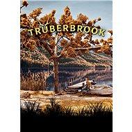 Truberbrook (PC)  Steam DIGITAL - PC játék