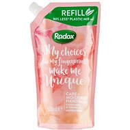 RADOX Anti-Bacterial Care+ Moisturise Hand Wash Refill 500 ml
