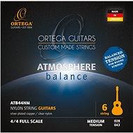 ORTEGA ATB44NM - Húr