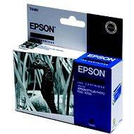 Epson T0481 fekete - Tintapatron