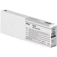 Epson T804900 - világos szürke - Toner