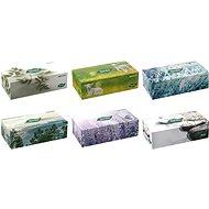 TENTO Family box 120 db, vegyes színek - Papírzsebkendő