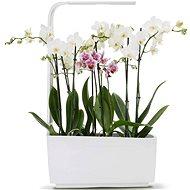 TREGREN T6 Kitchen Garden, fehér - Okos virágcserép