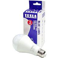Tesla BULB A65 E27 14W LED izzó - LED izzó