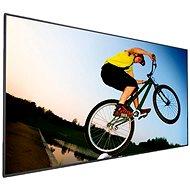 Philips 49BDL4050D nagyképernyős televízió - Nagyformátumú kijelző
