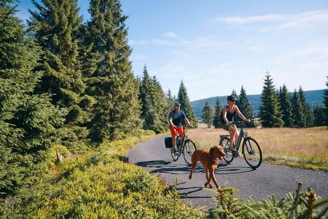 """ROMET WAGANT 2 - mérete M/19"""" - Trekking kerékpár"""